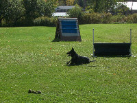 Eros working in obedience